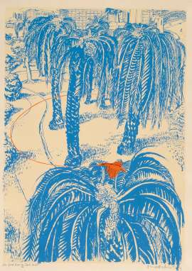 (The Orange) Fruit Dove in Clark Park by BRETT WHITELEY