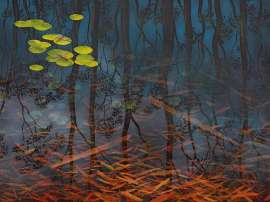 Fish and Ripple - Dingo Springs I by LIN ONUS