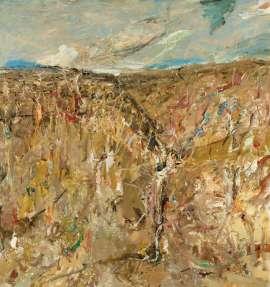 Tuross River Gorge by JOHN R WALKER