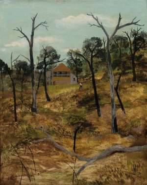 Ferntree Gully, Victoria by RAY CROOKE
