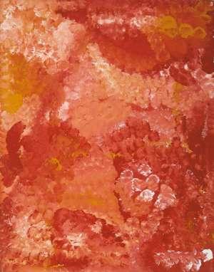Wild Potato by EMILY KAME KNGWARREYE