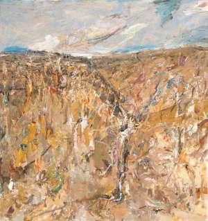 Tuross River Gorge by JOHN WALKER