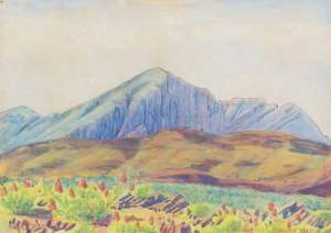Near Wildcat, Mount Sonder by ALBERT NAMATJIRA