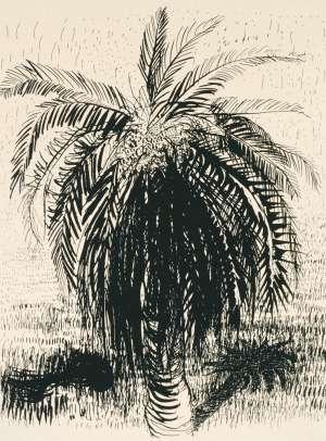 Palm Tree 1 by BRETT WHITELEY