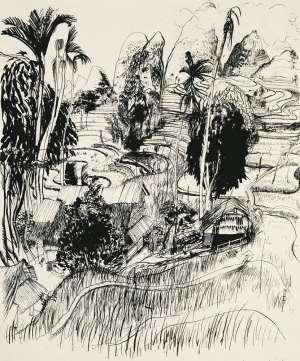 Torajaland (Celebres) by BRETT WHITELEY