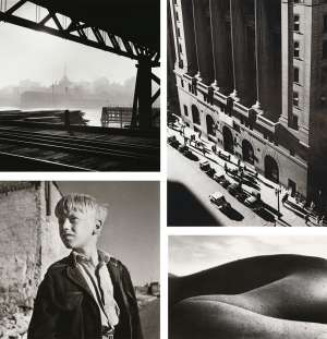 (i) Pyrmont Bridge; (ii) Martin Place; (iii) Surry Hills Boy 1; (iv) Landscape Nude by DAVID MOORE