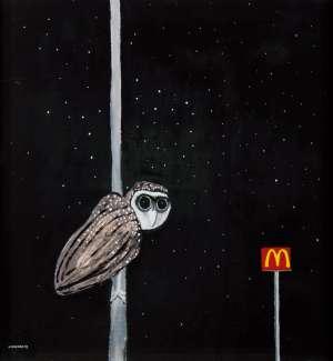 Sooty Owl by NOEL McKENNA