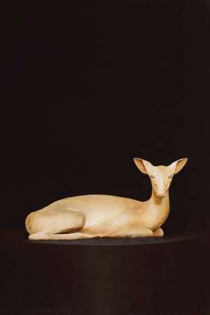Nolens Volens Deer by SAM LEACH