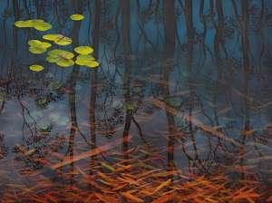 Fish and Ripple - Dingo Springs I by LIN ONUS