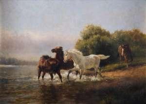 Wild Horses by J.H. SCHELTEMA