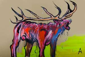Stag by ADAM CULLEN