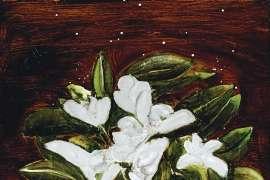 Still Life in the Moonlight by BRETT WHITELEY