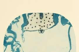 Frog Surprised by JOHN OLSEN