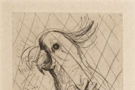 Hullo (Cockatoo) by BRETT WHITELEY