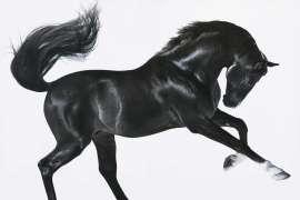 Epona's Child (Celtic God of Horses) by LAWRENCE STARKEY