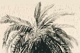 Palm Tree 1 by BRETT WHITELEY