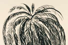 Palm Tree 2 by BRETT WHITELEY