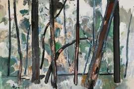 Mountain Ash, Kallista by FRED WILLIAMS