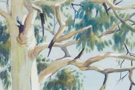 Untitled (Ghost Gum in Central Australian Landscape) by ALBERT NAMATJIRA