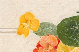 Lavender and Nasturtiums by CRESSIDA CAMPBELL