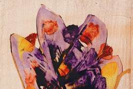 Untitled (Flowers) by SIDNEY NOLAN