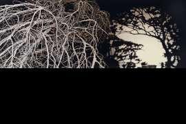 Evening, Bundanon by ANDREW BROWNE