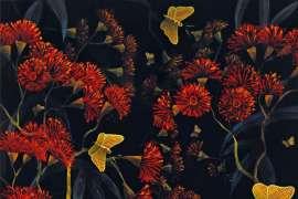 Butterflies, Sherbrooke Forest by LIN ONUS