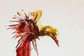 Bird, Man and Gun by SIDNEY NOLAN
