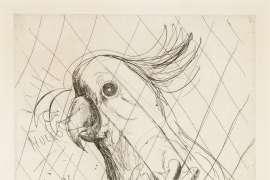 Hullo (Cockatoo) by BRETT WHITELEY