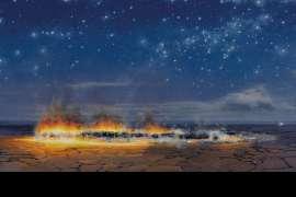 Autumn Night Fire by TIM STORRIER