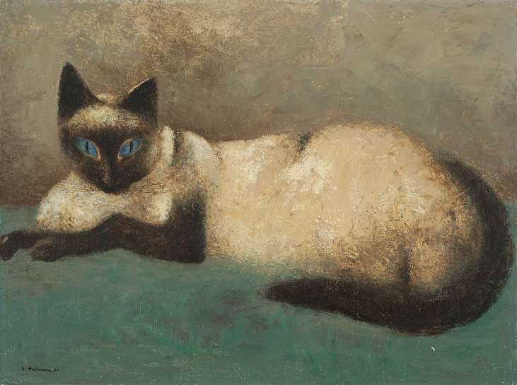Cat by SALI HERMAN