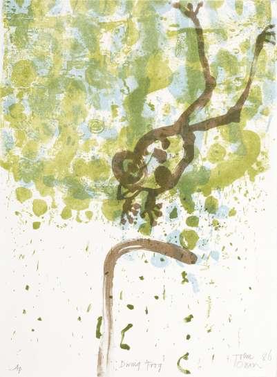 Diving Frog by JOHN OLSEN