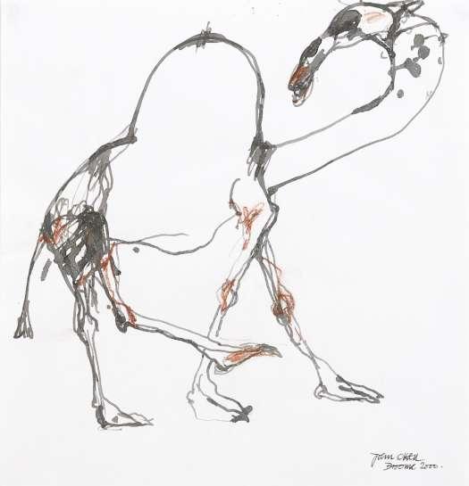 Untitled (Camel) by JOHN OLSEN