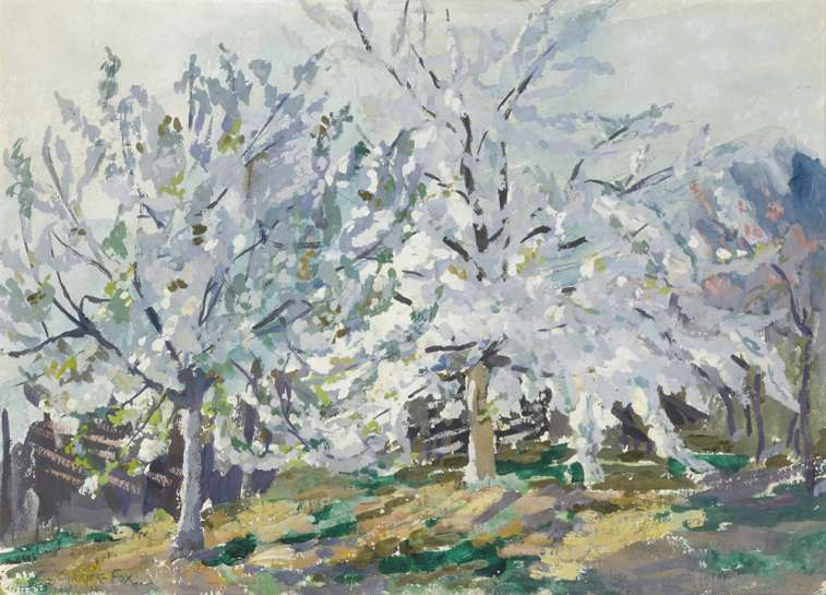 Cherry Blossom by ETHEL CARRICK FOX