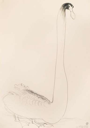Black Swan by BRETT WHITELEY
