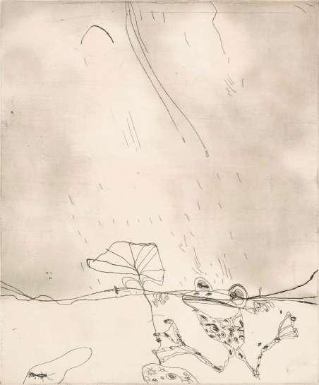 Frog in the Rain by JOHN OLSEN