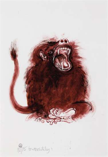 Baboon by BRETT WHITELEY