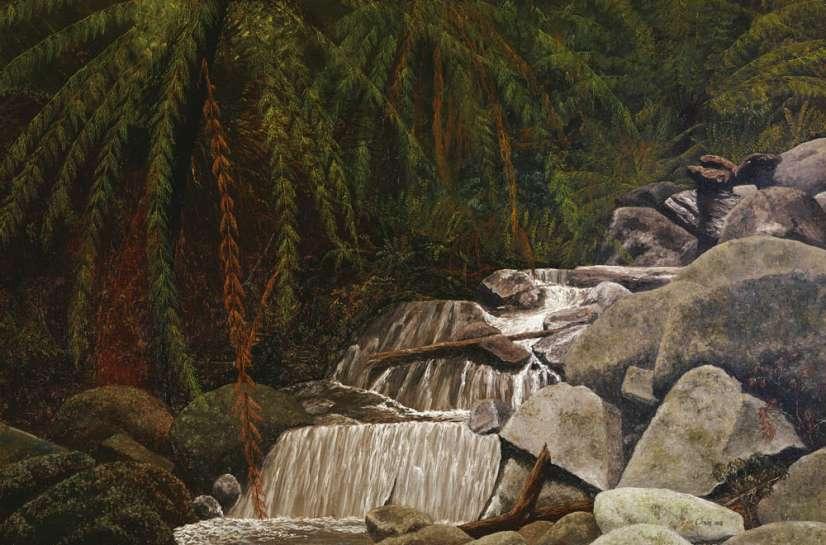 Sherbrooke Falls by LIN ONUS