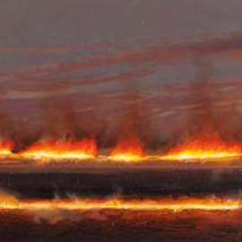 27. TIM STORRIERReflected Fireline1999image